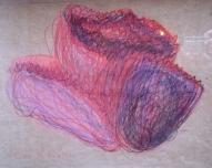 Violetā roze 2006, papīrs/kr.zīmuļi, 30x43